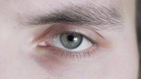 Plan rapproché d'un oeil gris masculin L'homme clignote, l'élève augmente et se rétrécit banque de vidéos