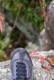 Plan rapproché d'un pied du ` s d'homme se tenant sur un rebord de roche regardant vers le bas dedans photo libre de droits
