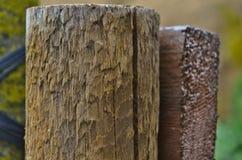 Plan rapproché d'un poteau en bois de jardin Photo stock