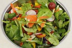 Plan rapproché d'une belle salade Photographie stock libre de droits