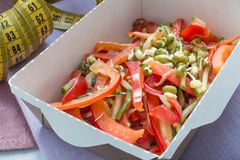 Plan rapproché d'une partie du plat sain de nutrition La livraison quotidienne fraîche de repas légume dans des boîtes de métier Photos libres de droits