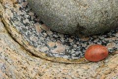 Plan rapproché d'une roche rougeâtre lisse contre d'autres roches texturisées colorées image libre de droits
