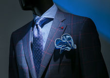 Veste Checkered bleue et rouge avec la chemise bleue Checkered, modelée Photographie stock libre de droits