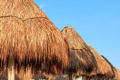 Plan rapproché de belle gamme de parasols de parapluie de paille/en bambou contre le ciel bleu Maya de la Riviera, Mexique image libre de droits