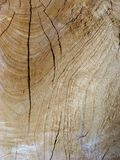 Plan rapproché de bois superficiel par les agents âgé Images stock