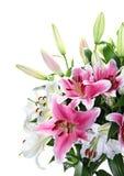 Plan rapproché de bouquet de lis rose et blanc images libres de droits