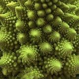 Plan rapproché de brocoli frais de Romanesco image stock
