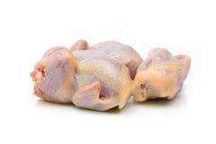 Plan rapproché de carcasse de cailles sur un fond blanc. Images stock