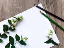 Plan rapproché de carnet et de crayons sur le fond en bois Décoré des branches vertes de snowberry Vue supérieure, configuration  Photo libre de droits