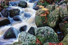 Plan rapproché de cascade d'automne Photographie stock libre de droits