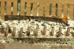 Plan rapproché de cendre du feu de cheminée Photographie stock