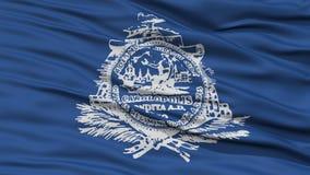 Plan rapproché de Charleston City Flag Photo libre de droits
