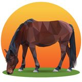 Plan rapproché de cheval de Brown bas poly illustration libre de droits