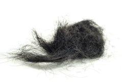 Plan rapproché de cheveux Image libre de droits