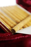 Plan rapproché de cigarillo Photo libre de droits
