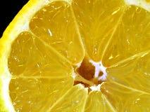 Plan rapproché de citron Images libres de droits