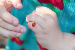 Plan rapproché de coccinelle sur le doigt de la petite fille Photo stock