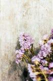Plan rapproché de composition sèche de fleurs Photographie stock libre de droits