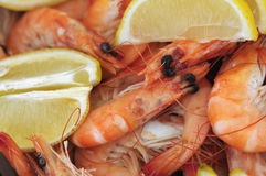Plan rapproché de crevette avec le citron image libre de droits
