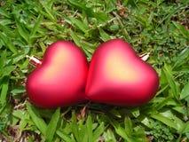 Plan rapproché de deux coeurs affectueux Photographie stock