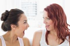 Plan rapproché de deux jeunes amis féminins gais Images stock