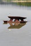 Plan rapproché de deux oiseaux se reposant sur une table de pique-nique placée dans l'eau Photos stock
