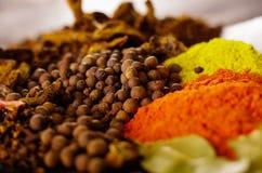 Plan rapproché de différentes piles ci-dessus des épices colorées, du bel arrangement rustique, de l'épice et du concept de fines Photos libres de droits