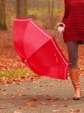 Plan rapproché de femme dans les bottes brunes avec le parapluie Photo libre de droits