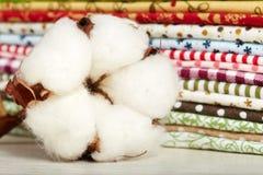 Plan rapproché de fleur de coton Images libres de droits