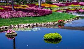 Plan rapproché de fleur et de festival de jardin - Walt Disney World Images stock