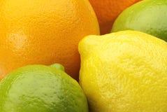 Plan rapproché de fruit Image stock