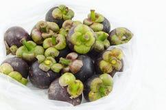 Plan rapproché de fruit d'été de mangoustan de la reine des fruits à l'arrière-plan de blanc d'isolat de sachet en plastique Images libres de droits