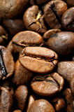 Plan rapproché de graines de café Photos stock