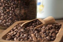 Plan rapproché de grains de café Image libre de droits