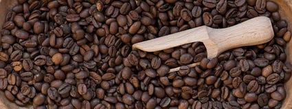 Plan rapproché de grains de café Photos libres de droits