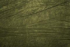 Plan rapproché de haute qualité de texture verte en bois de fond, Image libre de droits