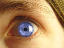 Plan rapproché de œil bleu Images libres de droits