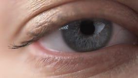 Plan rapproché de l'oeil bleu d'une jeune fille Examine soigneusement la caméra et les strabismes banque de vidéos
