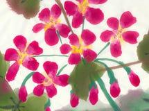 Plan rapproché de la fleur d'eranium - peinture sur le papier de riz Photo libre de droits