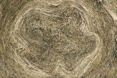 Plan rapproché de la meule de foin circulaire de petit pain d'or de foin montrant la texture de paille images libres de droits