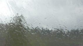 Plan rapproché de la pluie se renversant sur la fenêtre clips vidéos