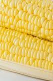 Plan rapproché de maïs Images stock