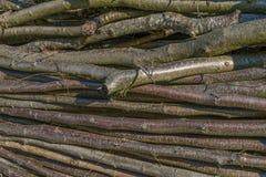 Plan rapproché de membre en bois empilé image libre de droits