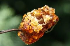 Plan rapproché de miel Photographie stock libre de droits