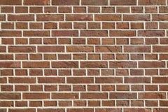 Plan rapproché de mur de briques photographie stock libre de droits
