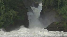 Plan rapproché de Murchison Falls dans le mouvement lent superbe et la couleur plate clips vidéos