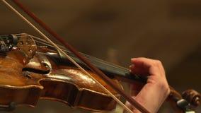 Plan rapproché de musicien jouant le violon banque de vidéos