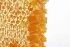 Plan rapproché de nid d'abeilles sur le fond blanc Photos libres de droits