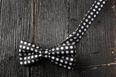 Plan rapproché de noeud papillon pointillé Photographie stock