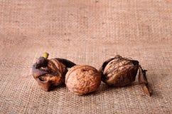 Plan rapproché de noix sur la toile à sac Photo libre de droits